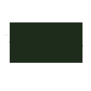 leavesico